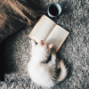 kitty + books