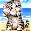 Animals: Cat (Summer)
