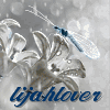 lijahlover: White flower with blue dragonfly
