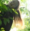 волосы, лес, я