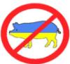 sergeenko_ivan