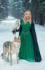 волк, ведьма, сокол, природа