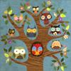 passing_through: owls!