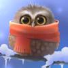 Birds: Owl (Scarf)