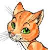 kittylad