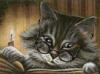 Кот читатель