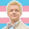 trans, me, default