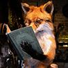 лис читает