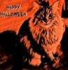 Halloween bete noir