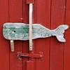 Whale door handle
