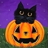 Halloween cute black cat/pumkin