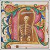 Skeleton holding a Scythe