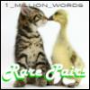 1MW-rare pairs