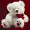 Teddy: White on Red