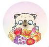 цветы для мопса