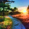 Scenery_LessaP
