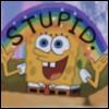 Sponge bob Stupid