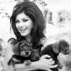 edwige with puppies