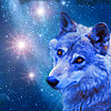Animals: Wolf (Blue)