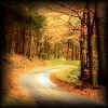 Autumn: Road (Winding)
