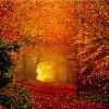 Autumn: Mystical