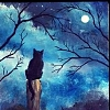 Animals: Cat (Black & moon)