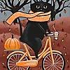 cat autumn bicycle