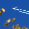 Осенний полёт 3