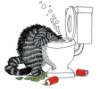 Kliban - barf cat
