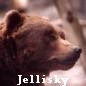 Jellisky