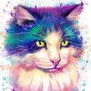 Cat May 21