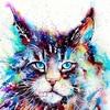 Cat Mat 21-2