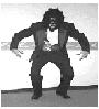 momozozo userpic