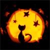 Cat w stars
