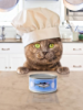 Кот повар 2