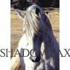 horseofrohan userpic