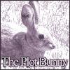 The Plot Bunny