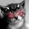 glasskalmia userpic