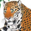 jaguar_warrior userpic