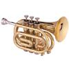 trumpetqt2006 userpic