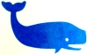 whale_bytes userpic