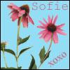 softysofie userpic