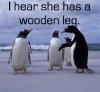wooden leg!