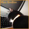 miss_booboo userpic