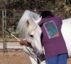 dancinghorse: hug