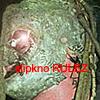 slipknot_luvr userpic