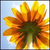bzde82 userpic