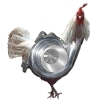 boost_rooster userpic