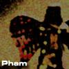 tuantuan userpic