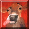 blueandredcows userpic